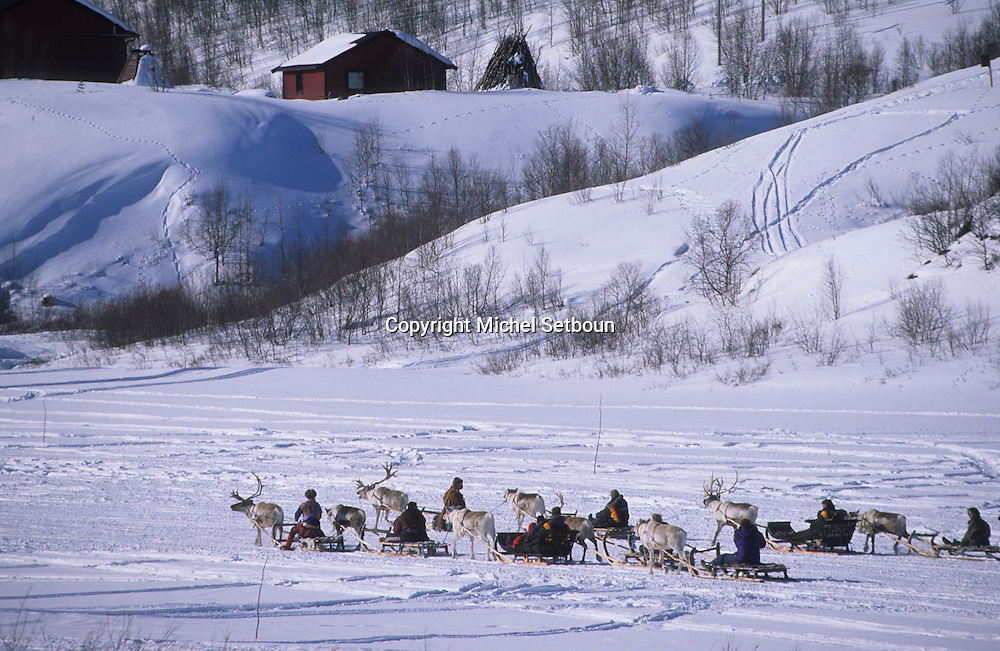Raindeers in the valley of Kautokeino and tthe lavous, traditionnal tent ; (like a tepee)  Lapland  Norway        rennes dans la vallée de Kautokeino et lavous, tentes traditionelles (tepee indien)  Laponie,   Norvege       L004762  /  R00330  /  P111305