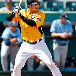 February 25, 2011; Bradenton, FL, USA; Pittsburgh Pirates infielder Chase d'Arnaud during a spring training exhibition game against the State College of Florida Manatees at McKechnie Field. The Pirates defeated the Manatees 21-1. Mandatory Credit: Derick E. Hingle