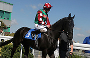 Jockey Liam Keniry on Arlecchino's Leap in the Parade Ring before the 4.20 race at Brighton Racecourse, Brighton & Hove, United Kingdom on 10 June 2015. Photo by Bennett Dean.