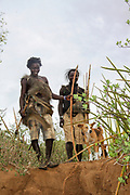 Hadza (or Hadzabe) Hunting party going to on a hunt. Photographed at Lake Eyasi, Tanzania