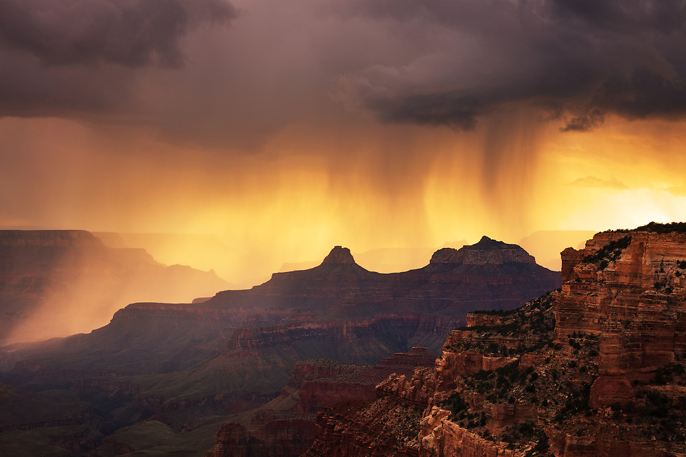 Rain falling from monsoon storms is backlit by the setting sun. From Cape Royal on the North Rim of Grand Canyon National Park.