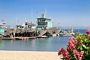 Green Pleasure Pier Avalon Bay