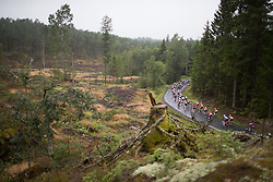 The peloton rides in the rain during the 76,1 km first stage of the 2016 Ladies' Tour of Norway women's road cycling race on August 12, 2016 between Halden and Fredrikstad, Norway. (Photo by Balint Hamvas/Velofocus)