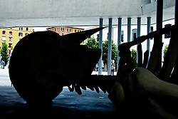 MAXXI Museum - First exhibition opening - Rome
