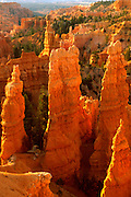 UTAH, BRYCE CANYON NATIONAL PARK sunrise view of the 'Fairyland' area an amphitheatre of tall, fanciful spires in delicate colors