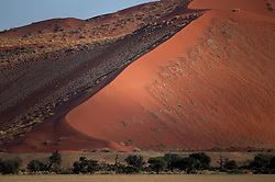NAMIBIA SOSSUSVLEI 21APR14 - General view of sand dunes in the Sossusvlei in the Namib Desert, Namibia.<br /> <br /> Sossusvlei is a salt and clay pan surrounded by high red dunes, located in the southern part of the Namib Desert, in the Namib-Naukluft National Park, which is one of the major visitor attractions of Namibia.<br /> <br /> jre/Photo by Jiri Rezac<br /> <br /> © Jiri Rezac 2014