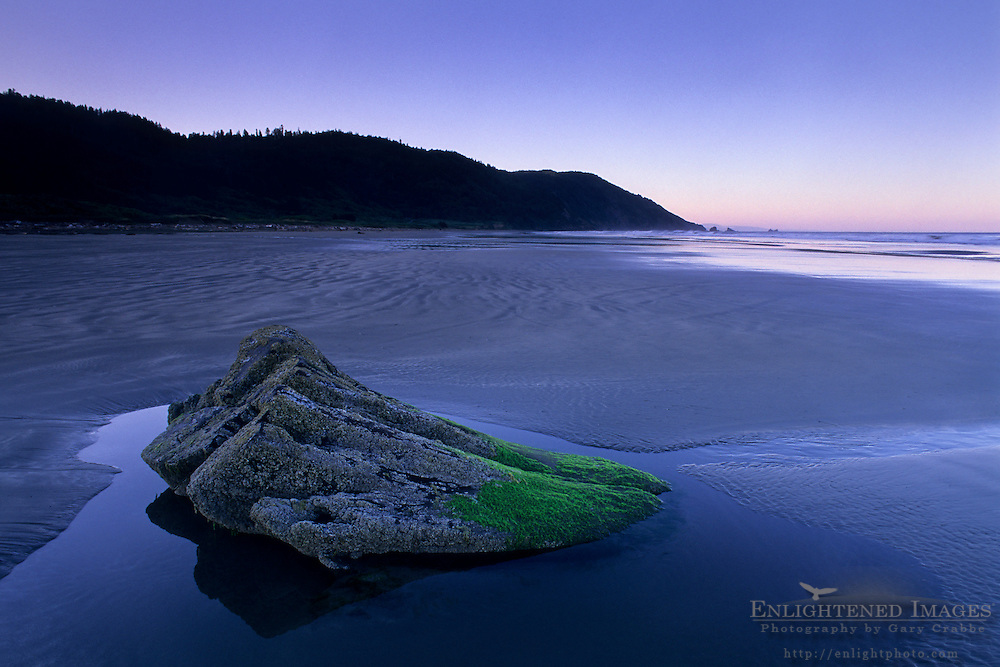Rock in tidal zone along Enderts Beach, Crescent City, California