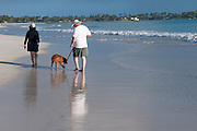 A couple walk their dog along Kailua Beach.