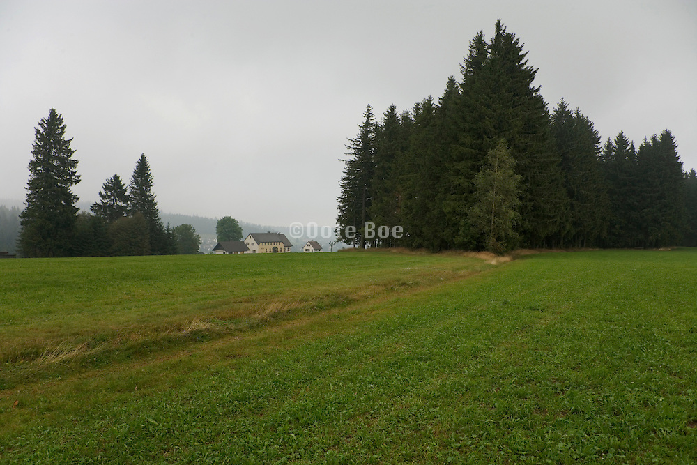 wooded land with houses in the background Black Forest Germany