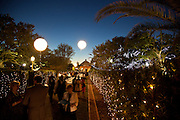 "New Orleans Botanical Garden's ""Magic in the Moonlight"" fundraiser"