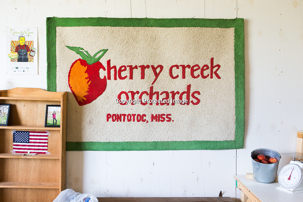 Cherry Creek Orchards in Pontotoc sells fruits and some vegetables seasonally from their building on Hwy. 345. They also sells their peaches, nectarines and blackberries at local farmer's in the area.