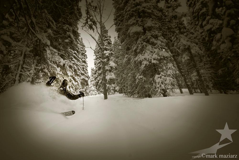 Powder skiing in the trees at Deer Valley, Utah