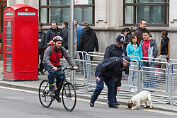 © Licensed to London News Pictures . 17/04/2013 . London , UK . Security police with sniffer dogs search along Whitehall . The funeral of former British Conservative Prime Minister , Baroness Margaret Thatcher , today (Wednesday 17th April 2013) in Central London . Baroness Thatcher died from a stroke at the age of 87 . Photo credit : Joel Goodman/LNP