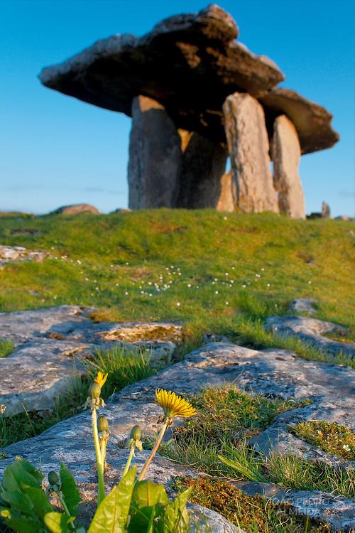 Poulnabrone dolmen at Western Ireland