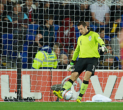 CARDIFF, WALES - Friday, October 12, 2012: Wales' goalkeeper Lewis Price looks dejected as Scotland score the opening goal during the Brazil 2014 FIFA World Cup Qualifying Group A match at the Cardiff City Stadium. (Pic by David Rawcliffe/Propaganda)