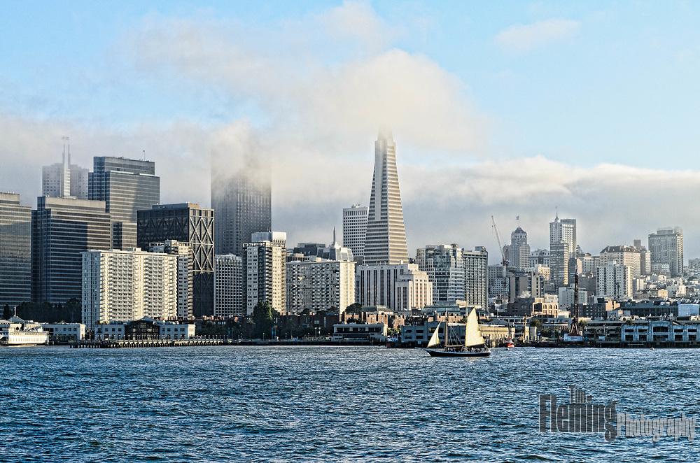 The San Francisco skyline on a foggy morning.