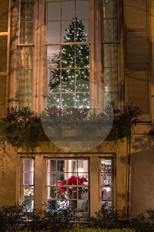 Christmas tree seen in window in historic Savannah, GA.