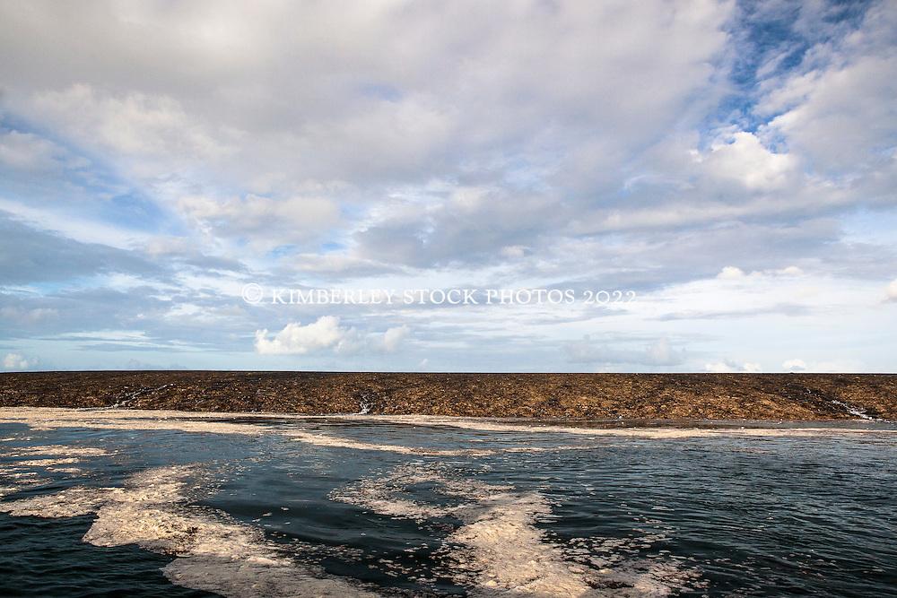 Clouds over Montgomery Reef in the Kimberley wet season.