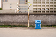 A lone tree with bin, Beijing, The People's Republic of China