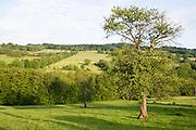 Landschaft Vogelsberg, Hessen, Deutschland