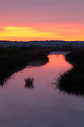 Sunrise over Fresh-water marsh<br /> -South Carolina U.S.A
