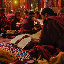 Monks reading religious Buddhist books in their monastery, Tibet.