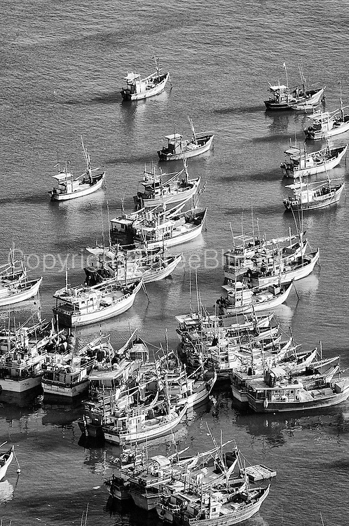 Boats at a south coast fisheries harbour