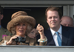 The Duchess of Cornwall with her son Tom Parker Bowles at the Cheltenham Festival Ladies Day. Cheltenham Racecourse, Cheltenham, United Kingdom. Wednesday, 12th March 2014. Picture by i-Images