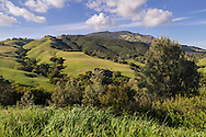 Green hills in Spring, Mount Diablo State Park, Contra Costa County, California