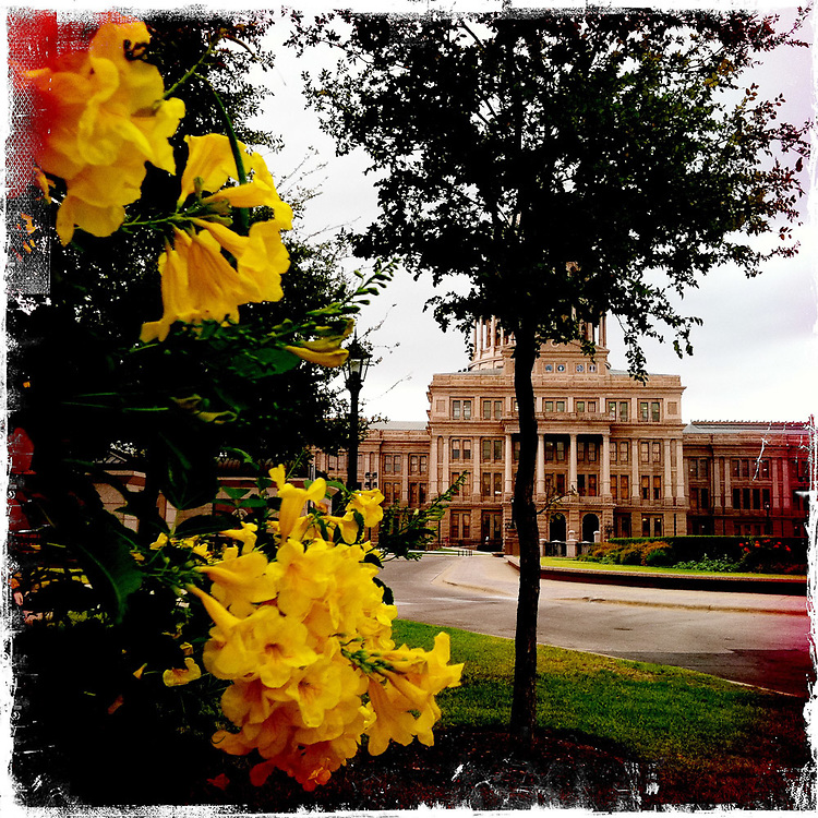 Capitol grounds - Austin, Texas