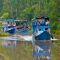 Alberto Carrera, Klotok, Wooden river boat, Sekonyer River, Tanjung Puting National Park, Kalimantan, Borneo, Indonesia