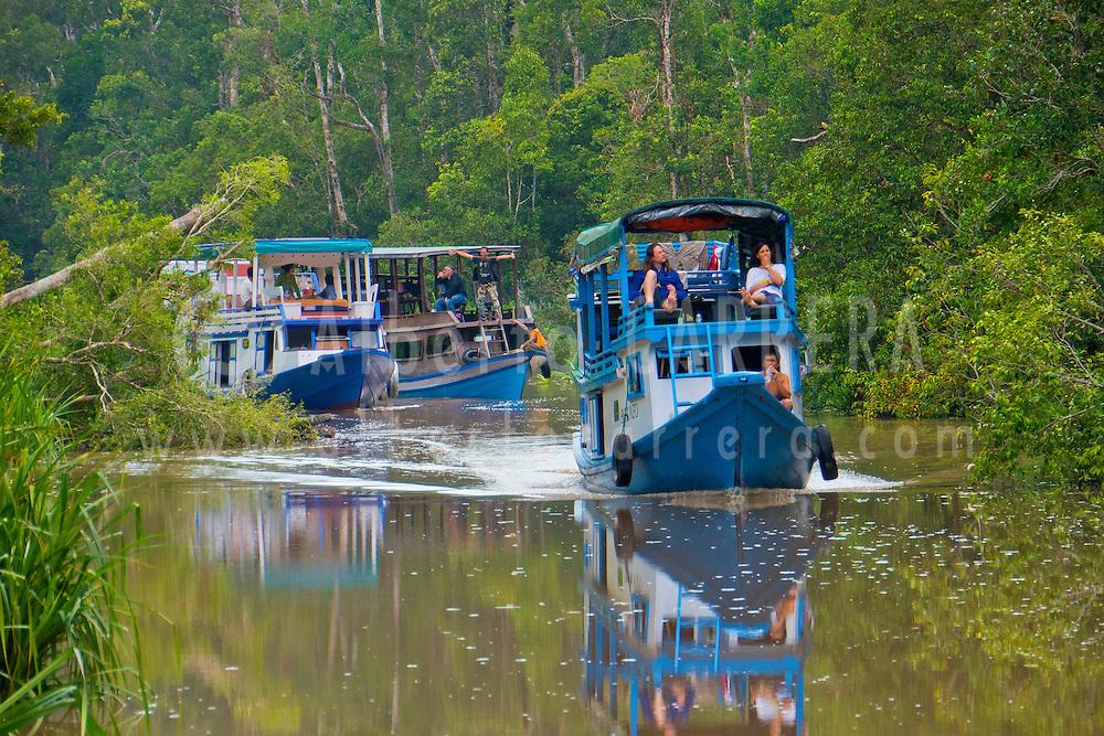 Alberto Carrera, Klotok, Wooden river boat, Sekonyer River, Tanjung Puting National Park, Kalimantan, Borneo, Indonesia