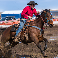 Red Lodge Skijoring