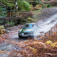 Car 93 Steve Robertson / Julia Robertson
