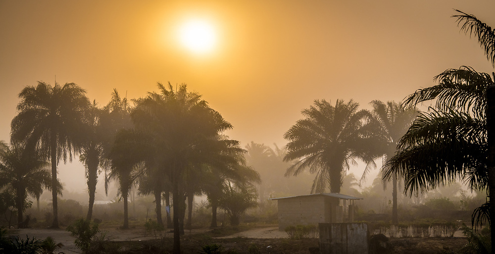 The sunsets over palm trees in Ganta Liberia