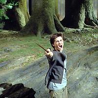 MOVIE, Harry Potter and the Prisoner of Azkaban