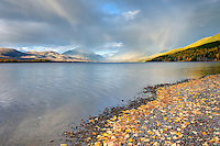Fallen leaves on the shore of Lake McDonald, Glacier National Park Montana USA