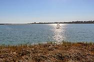 Georgica Pond,  East Hampton, NY