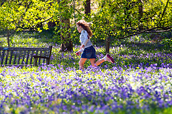 © Licensed to London News Pictures. 15/04/2014. Guildford, UK. A girl runs amongst the bluebells. People enjoy the afternoon  sunshine at Winkworth Arboretum in Surrey today 15th April 2014. Photo credit : Stephen Simpson/LNP