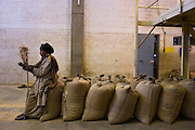 An Ethiopian factory cleaner uses 100 kilo bags of export quality green coffee bean for a break spot in the giant warehouse of the Keffa Export Coffee Processing Plant February 21, 2007 in Addis Ababa, Ethiopia.  About 40% of the more than 120,000 metric tons of green coffee beans Ethiopia exports per year are processed at the Keffa plant.