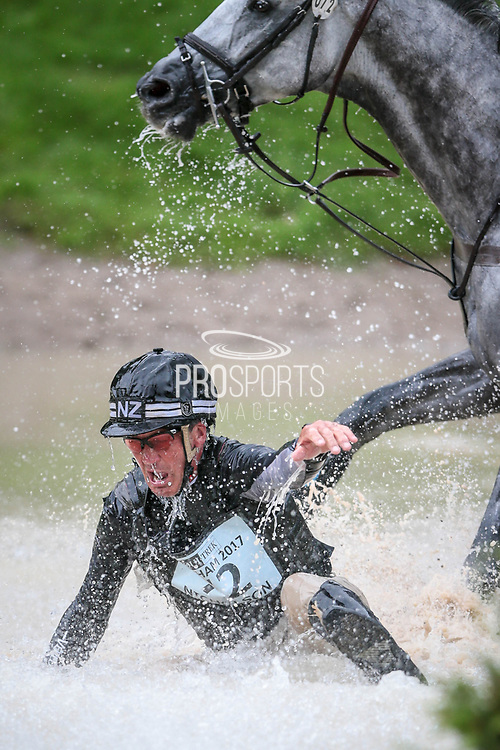 SWALLOW SPRINGS ridden by Andrew Nicholson (NZL)  falls at the water fences during day three of the Equitrek CCI*** event at Bramham International Horse Trials 2017 at  at Bramham Park, Bramham, United Kingdom on 11 June 2017. Photo by Mark P Doherty.