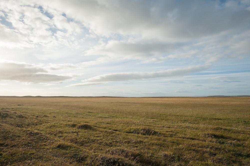 Endless plains, Patragonia, Chile