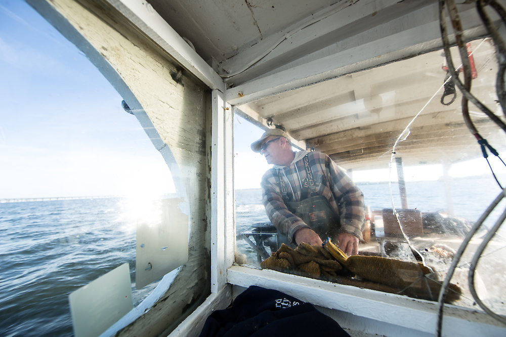 Captain Richard guides the boat to the next buoy | October 11, 2015