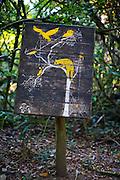 Pocos de Caldas_MG, Brasil...Plano de manejo das Reserva Particular do Patrimonio Natural (RPPN) em Pocos de Caldas, Minas Gerais...The Private Natural Heritage Reserve (RPPN) in Pocos de Caldas, Minas Gerais...Foto: JOAO MARCOS ROSA /  NITRO.