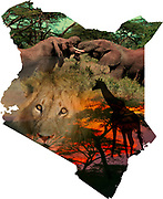Digitally enhanced image of a Map of Kenya collage with local images of wildlife and scenery