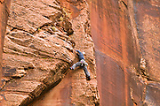 Rock climber in Zion Canyon, Zion National Park, Utah