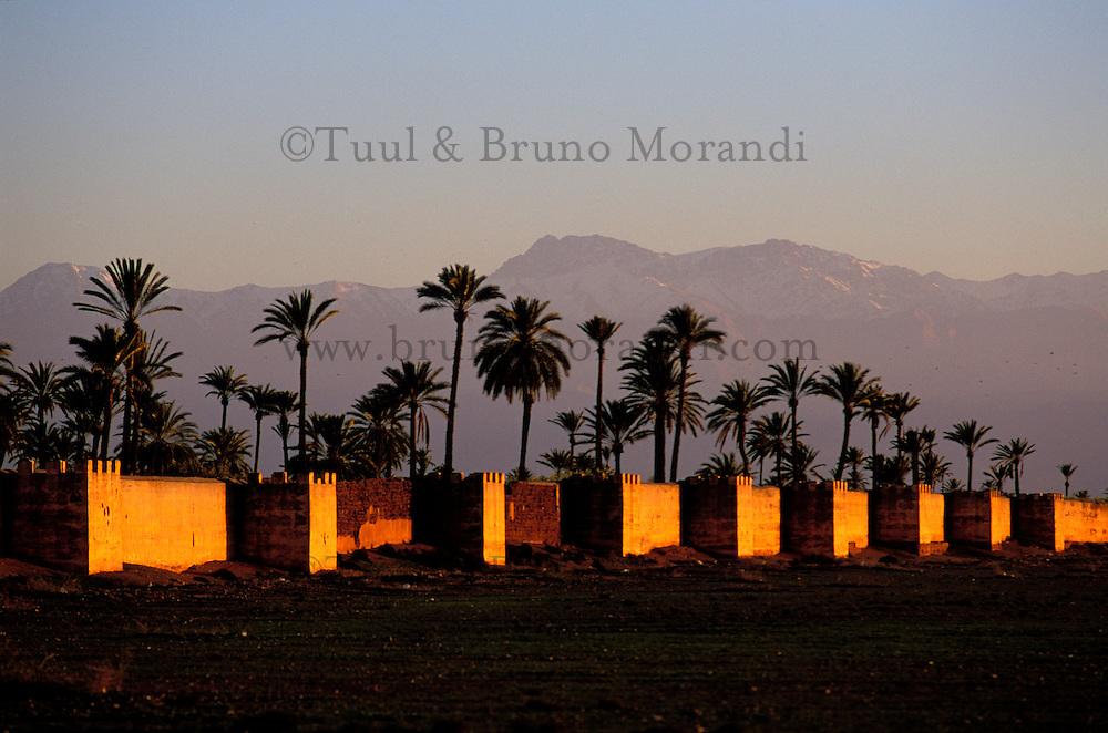 Maroc, Marrakech, Les Remparts, la palmeraie et l'Atlas // Morocco, Marrakech, rampart and Atlas mountain