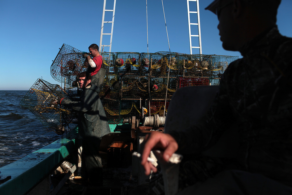 Jason Melerine crabbing with his deckhand Stephen Tircuit and boat owner Mike Kospelich, and his nephew Matt Palazzotto in Black Bay and Bretton Sounds, LA on November 9, 2010.