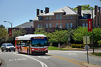 Wolfline bus heads down Pullen Road past Holladay Hall.