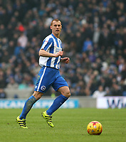 Football - 2016 / 2017 Sky Bet Championship - Brighton & Hove Albion vs. Burton Albion<br /> <br /> Brighton's Steve Sidwell in action at the Amex Stadium Brighton<br /> <br /> COLORSPORT/SHAUN BOGGUST